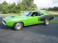 <h5>71 Sassy Grass Cuda</h5><p>Enter your Description 																																																																																																																							</p>